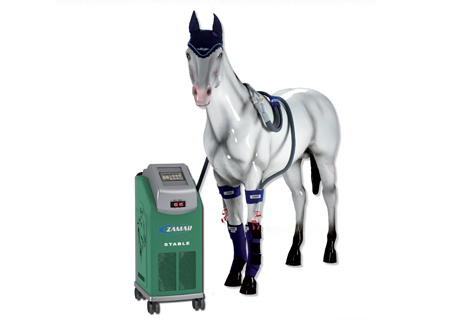 Horse health Zamar machine